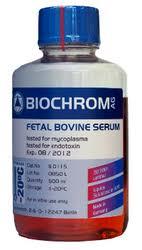FBS BIOCHROM - محیط کشت سلولی